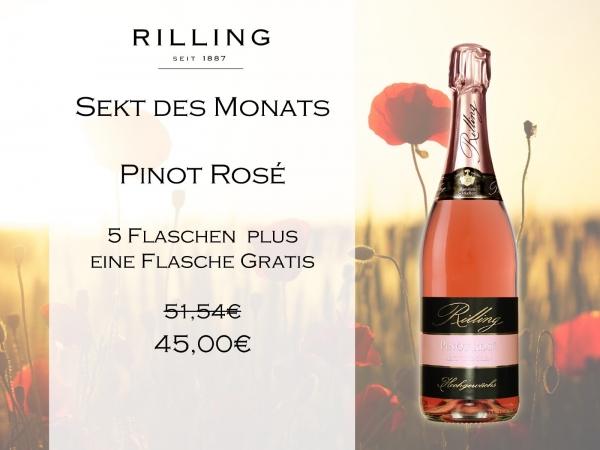 6x Pinot Rosé 0,75l